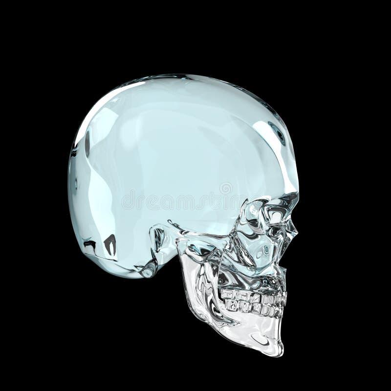 Сияющее лоснистое skul темного стекла представляет изолированный на черном взгляде со стороны предпосылки стоковые фото