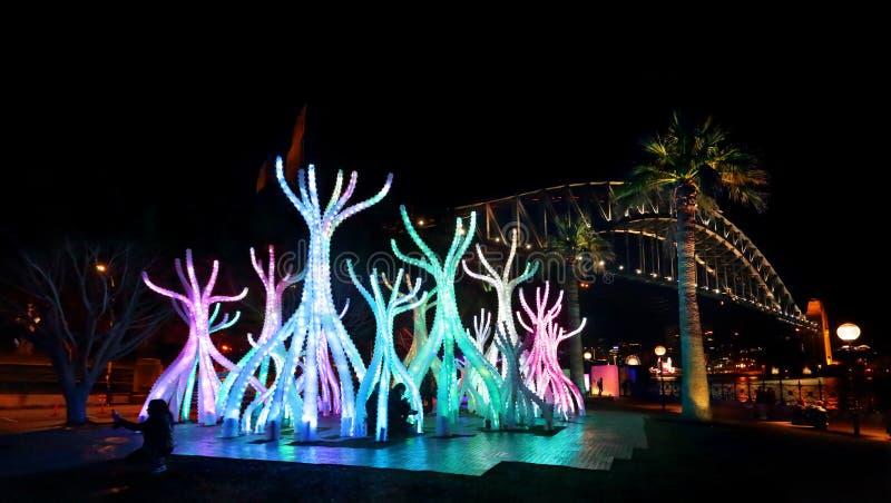 Сидней яркий - Arclight на ноче с мостом гавани Сиднея стоковая фотография