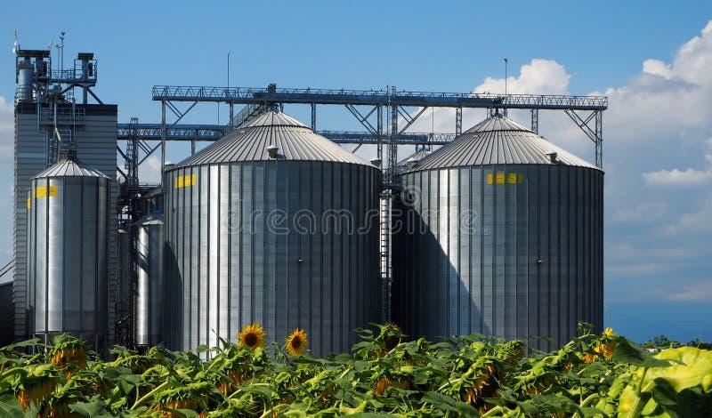 Силосохранилища хлопьев перед полем солнцецветов стоковая фотография rf