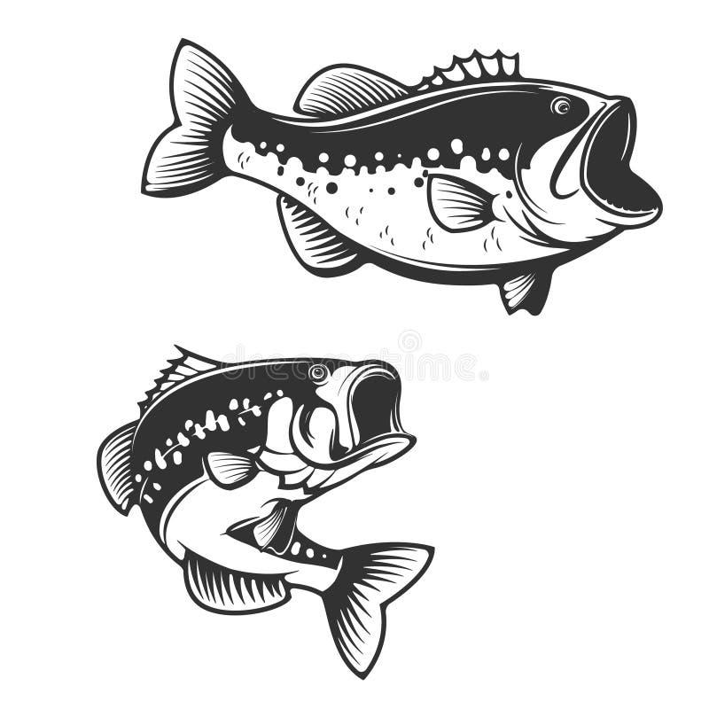 Силуэты рыб морского окуня изолированные на белой предпосылке Дизайн e бесплатная иллюстрация