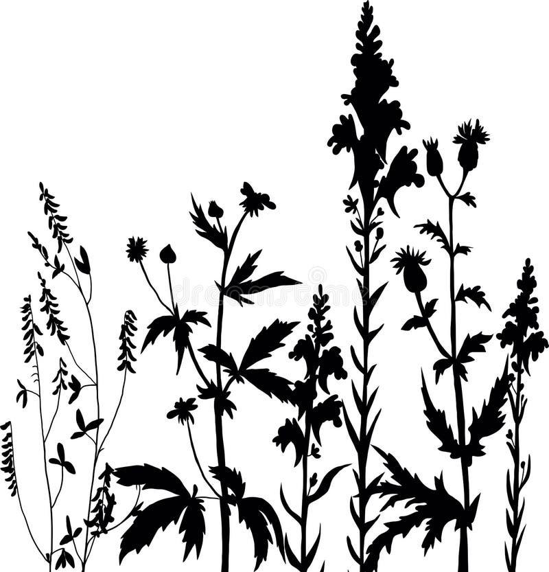Силуэты цветков и травы бесплатная иллюстрация