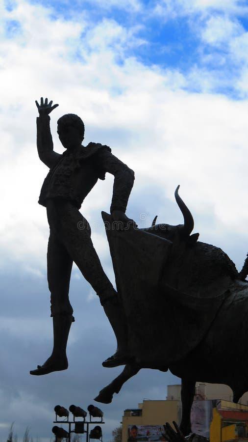 Силуэт бойца Bull и быка стоковые фотографии rf