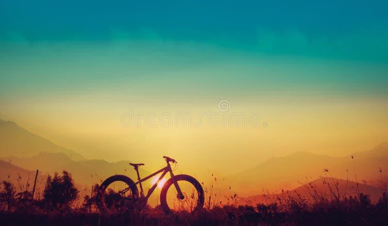 Силуэт горного велосипеда на красивом заходе солнца, fatbike силуэта стоковое фото