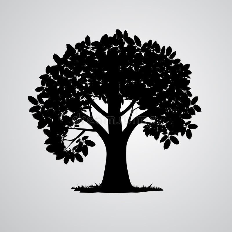Силуэт дерева вектора черный иллюстрация штока