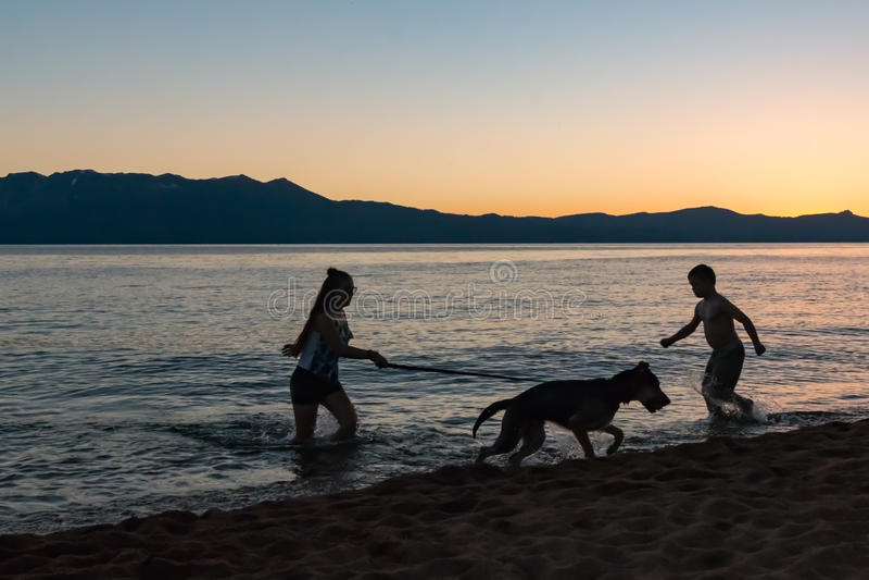 Силуэт 2 детей играя с собакой на береге озера стоковая фотография