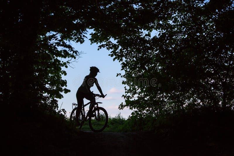Силуэт женщины которая стоит с велосипедом стоковые изображения rf