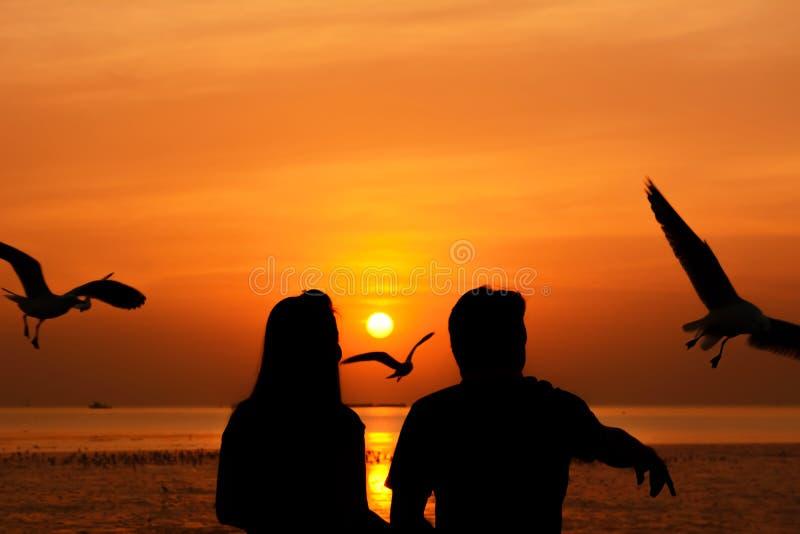 Силуэт мужчины & женских (пары) подавая птиц в сумерк стоковые фотографии rf