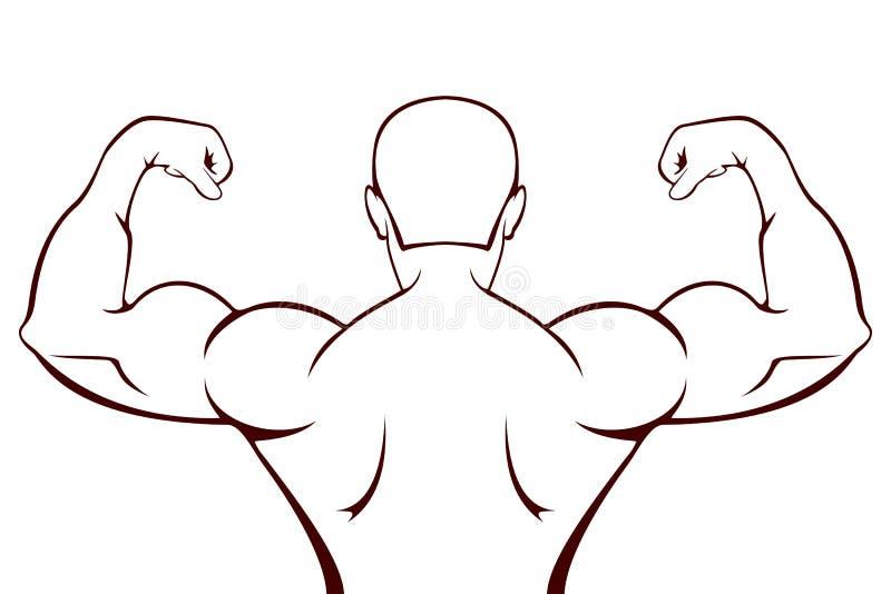 Силуэт мышечного человека на белизне иллюстрация штока
