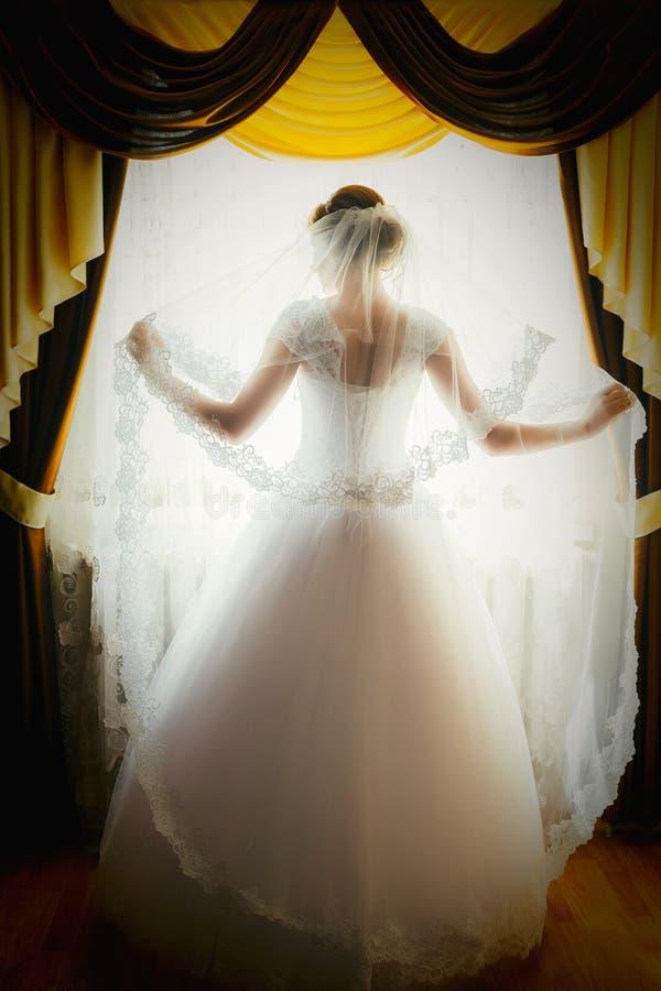 Силуэт невесты стоит на окне и держит вуаль Портрет невесты от задней части стоковое изображение rf