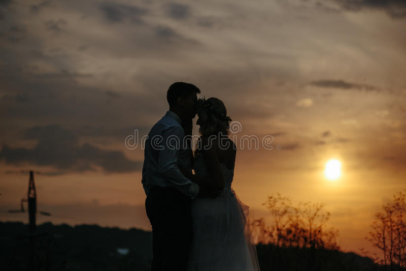 Силуэт пар свадьбы в поле стоковое изображение