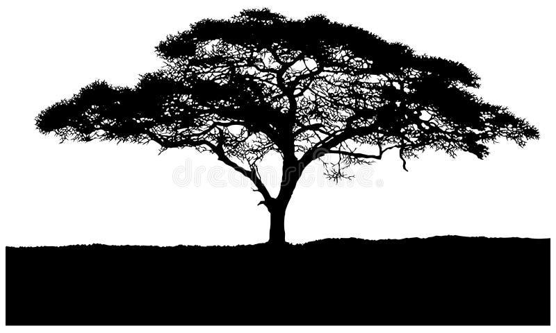 Силуэт саванны африканца дерева бесплатная иллюстрация
