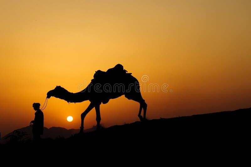 Силуэт торговца верблюда пересекая песчанную дюну стоковая фотография