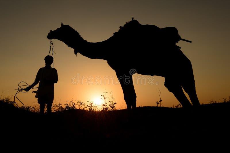 Силуэт торговца верблюда пересекая песчанную дюну стоковое изображение rf