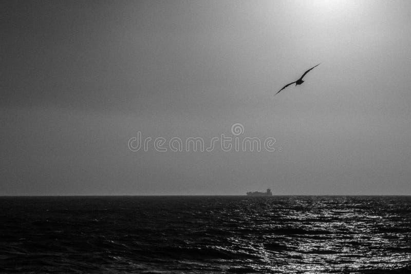 Море а над морем чайки минус море а над морем чайки песня слушать.
