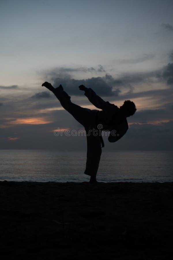 Силуэт человека боевых искусств тренируя Тхэквондо стоковая фотография rf