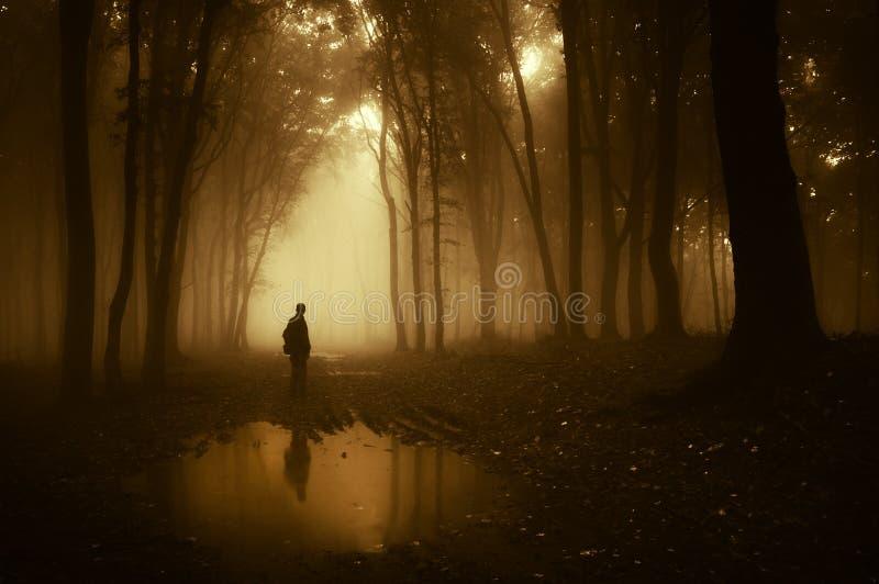 Силуэт человека стоя около пруда в темном страшном лесе с туманом в осени стоковая фотография
