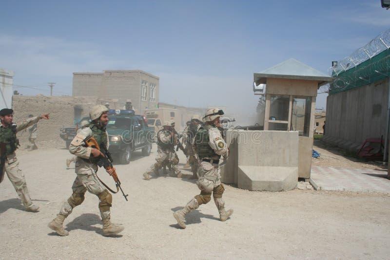 Силы специального назначения Афганистана стоковые фотографии rf