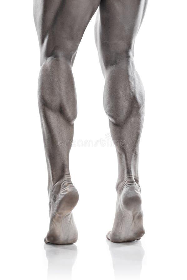 Сильный атлетический торс модели фитнеса человека показывая мышечные ноги стоковая фотография