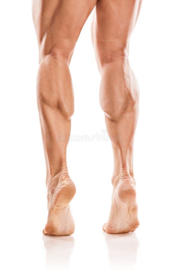 Сильный атлетический торс модели фитнеса человека показывая нагое мышечное стоковая фотография