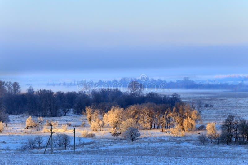 Сильный туман в зиме стоковые изображения rf