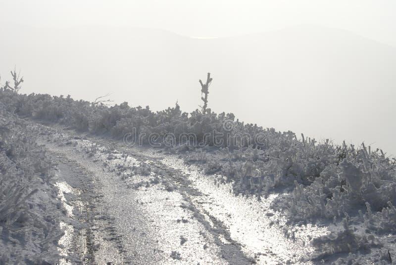 Сказ зимы горы в Gelendzhik стоковое фото