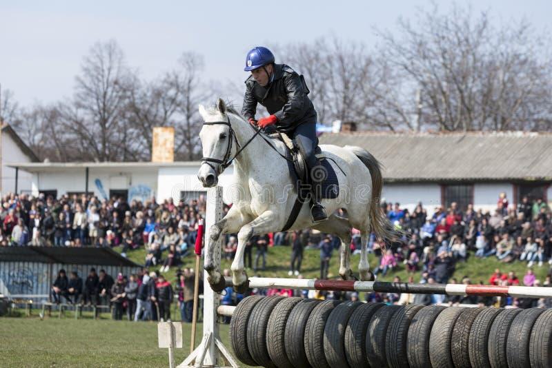 Скакать барьера полиции лошади стоковое фото