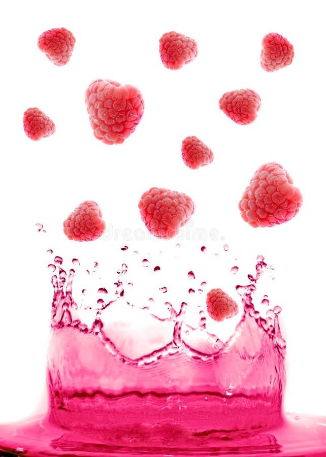 скакать ягоды стоковые изображения