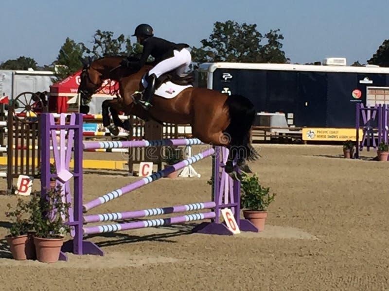 Скакать Grand Prix cwd парка лошади Paso Robles стоковое изображение