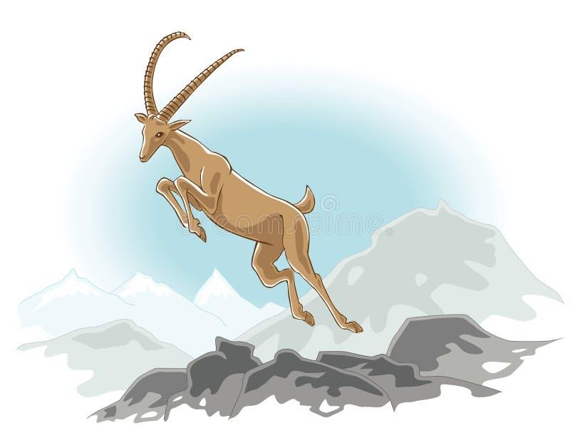 скакать ibex иллюстрация штока