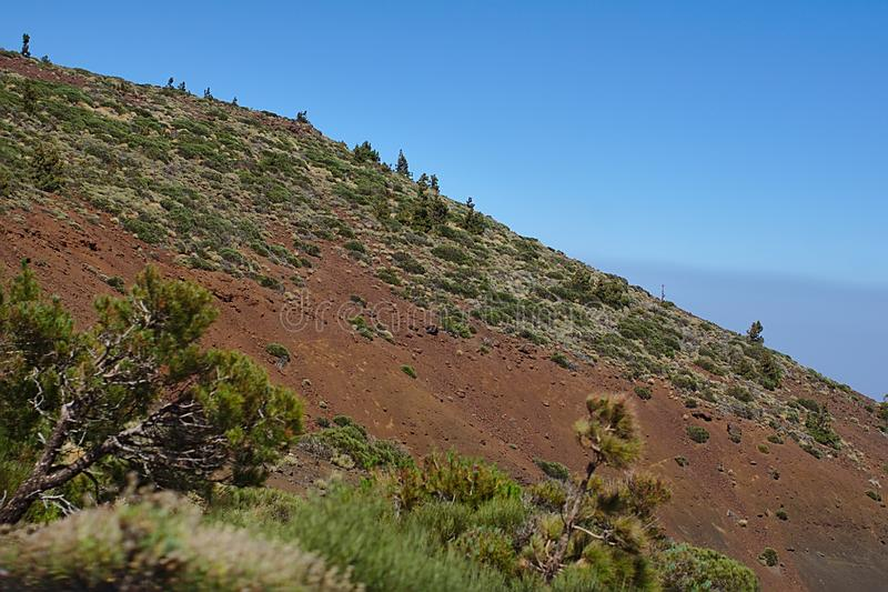 Скала Брауна в национальном парке, в горах, ландшафт с заводами, текстура, отключение Тенерифе стоковое изображение