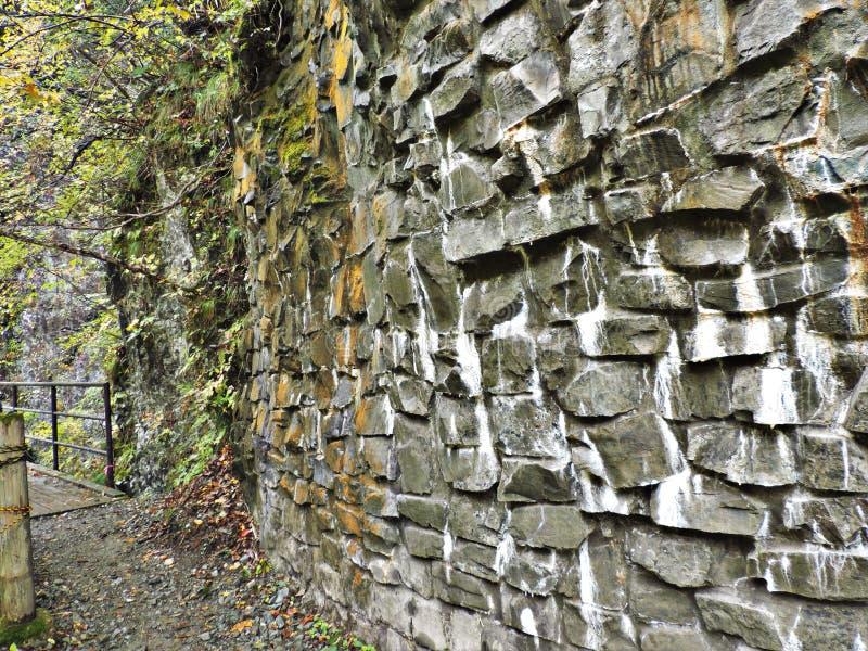Скала утеса на ущелье Dakigaeri в Японии стоковая фотография rf