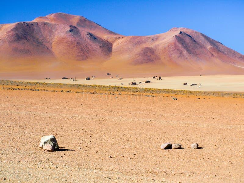 Скалистая пустыня андийского altiplano Пустыня Salvator Dali в национальном парке Eduardo Avaroa, Боливии, Южной Америке стоковые изображения rf