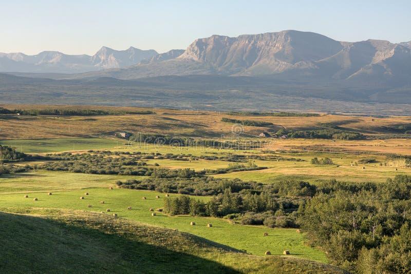 Скалистые горы и предгорья в Альберте стоковая фотография rf