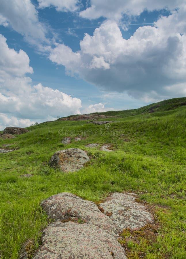 Скалистый берег южного реки черепашки зеленая трава и красные камни на береге против голубого неба стоковое фото rf