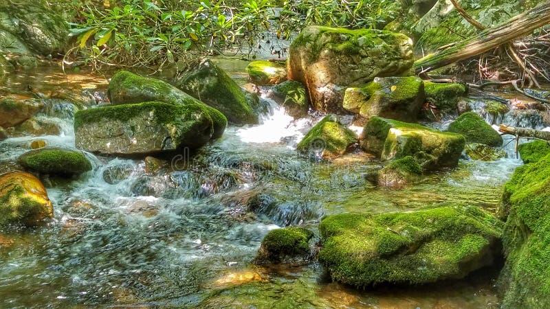 Скалистый парк штата вилки стоковые фотографии rf