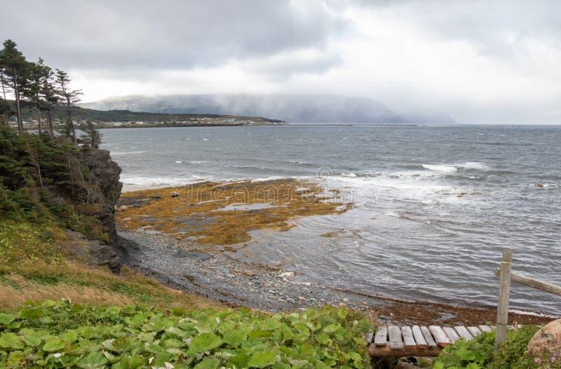Скалистый seascape Ньюфаундленда гавани стоковое фото rf