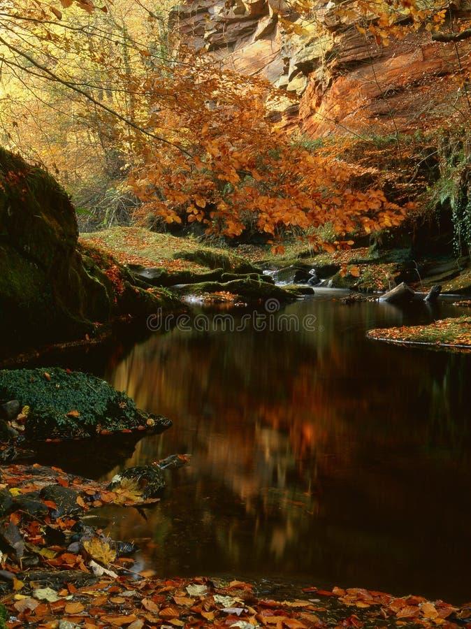 Скалы песчаника Gelt реки, осень стоковое фото rf