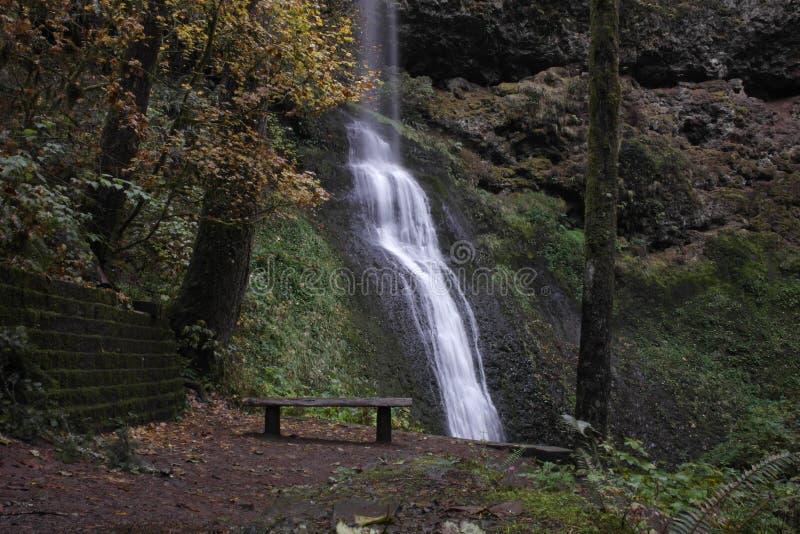 Скамейка в парке водопада место tranquilo стоковые изображения