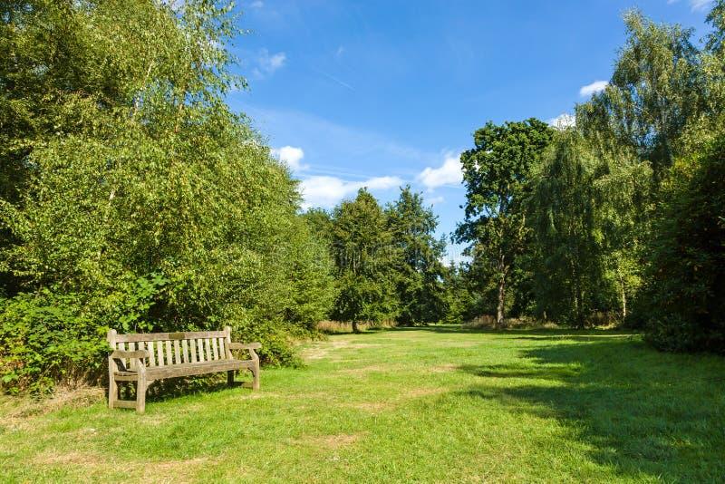 Скамейка в парке в красивом сочном зеленом саде стоковые фото