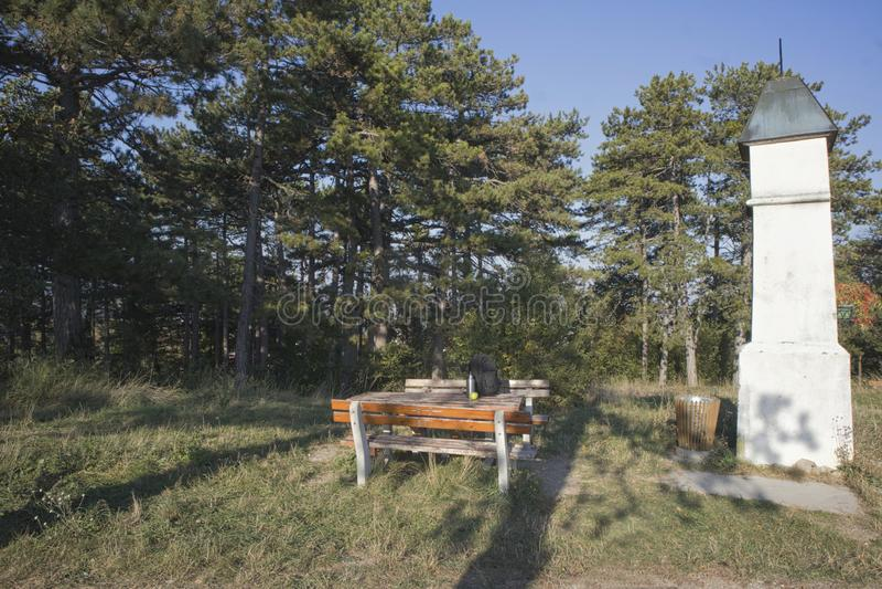 скамейка в парке с bagpack для остатков стоковое изображение rf