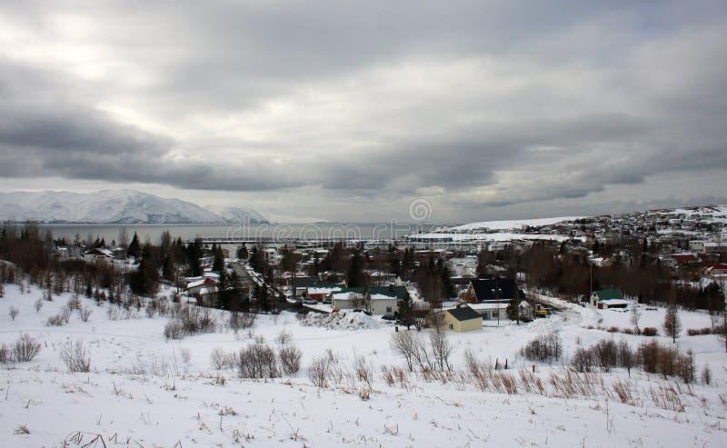 Скандинавский городок в зиме стоковая фотография rf