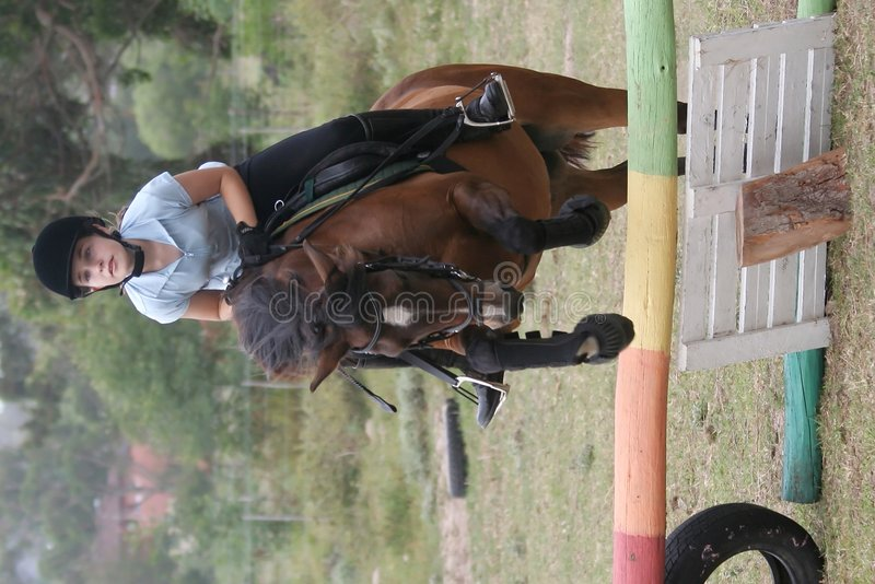 скача детеныши пониа повелительницы стоковая фотография