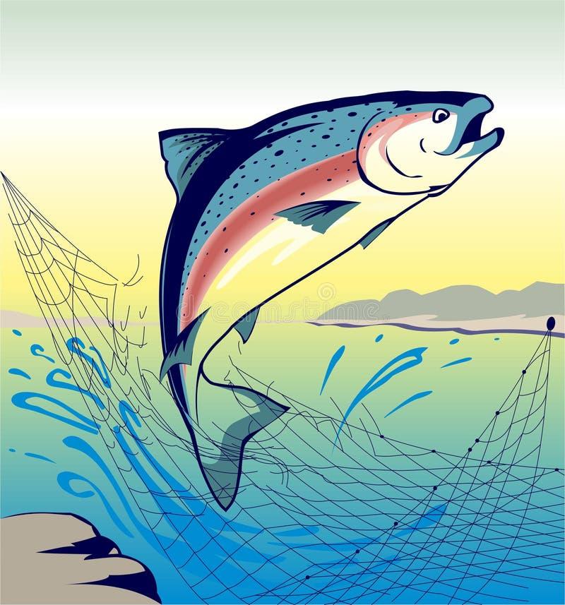 Скача семги рыб - иллюстрация иллюстрация вектора