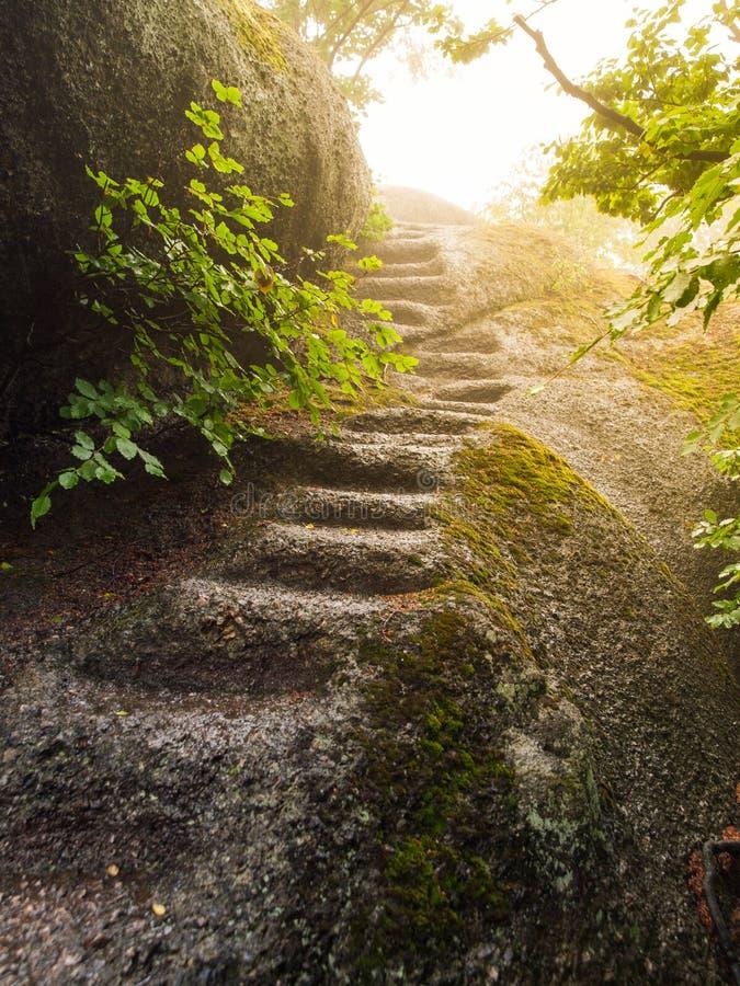 Скачками естественные шаги высекли в утесе гранита стоковая фотография rf