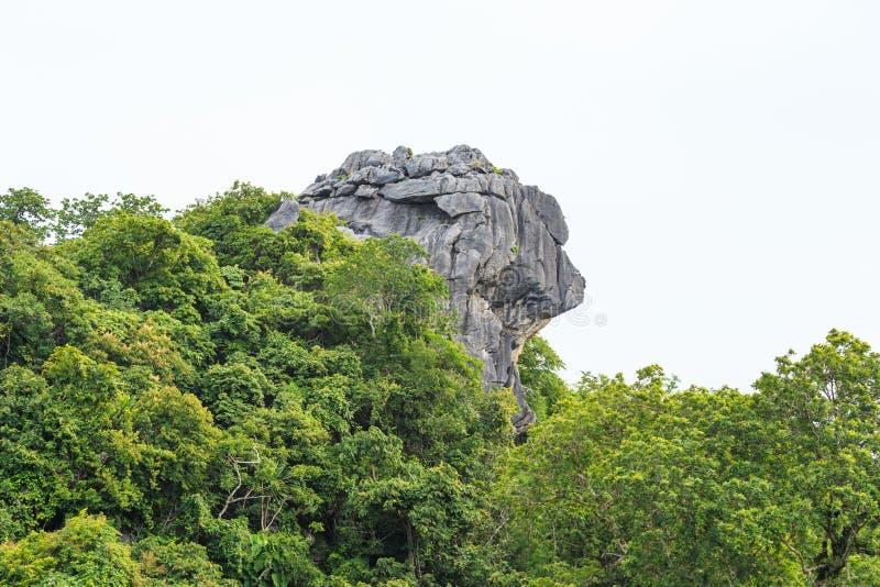 Скала льва головная стоковое изображение