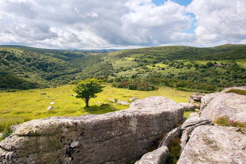Скалистая вершина Dartmoor стенда стоковое изображение