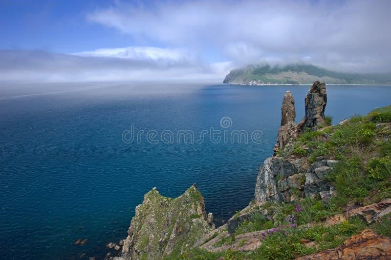 Скалистое побережье которое покрывает туман стоковое фото