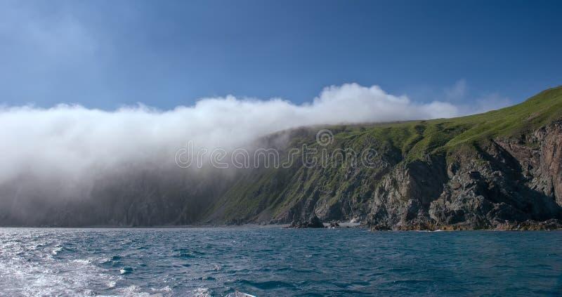 Скалистое побережье, предусматриванное в тумане стоковое изображение