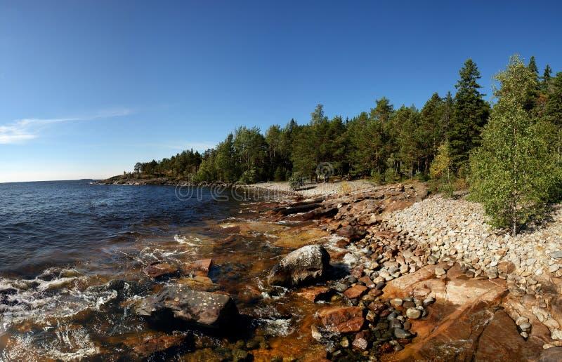 Download Скалистый берег с лесом стоковое изображение. изображение насчитывающей природа - 41661769