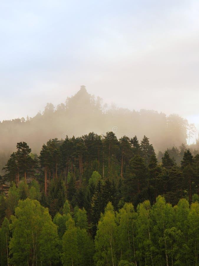 Скалистый пик вставляет вне от леса к темному серому облаку туманная весна утра стоковые изображения